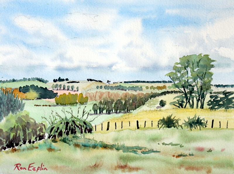 Ron's painting of the Manawatu